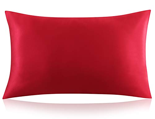 ZIMASILK 100% Mulberry Silk Pillowcase for Hair and Skin Health,Both Side 19 Momme Silk, 1pc (Queen 20''x30'',...