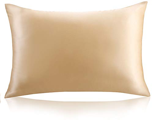 ZIMASILK 100% Mulberry Silk Pillowcase for Hair and Skin ,Both Side 19 Momme Silk, 1pc (Queen 20''x30'',...
