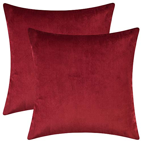 Artcest Set of 2, Cozy Solid Velvet Throw Pillow Case, Decorative Couch Cushion Cover, Soft Sofa Euro Sham...