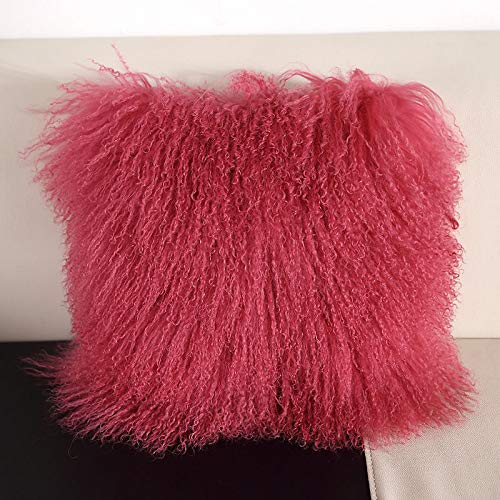 Seek4comfortable 100% Real Sheepskin Wool Fur Throw Pillow Cover| Fur Decorative Cushion Cover Pillow Case for...